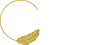 Zineo Events Logo